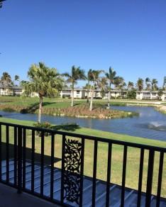 221Palm2-view-golf-lake